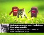 gatitos20-20media20crear20publicidad